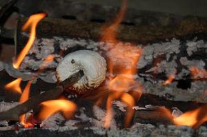 toasting-marshmallow.jpg